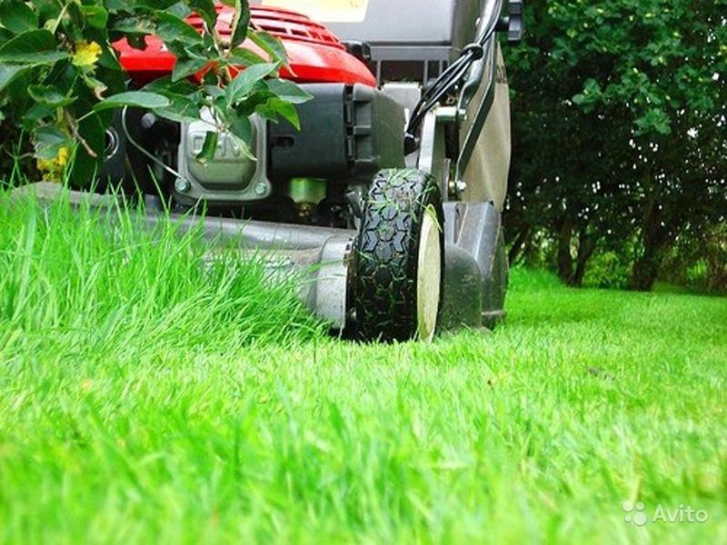 pakalpojumi kositj travu 4